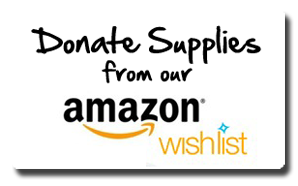 Click here for our Amazon WishList